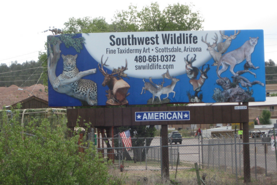 Southwest Wildlife Static Bulletin
